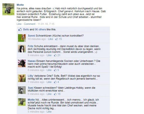 Fake-Text Facebook