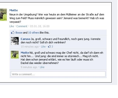 Foto von Facebook-Post
